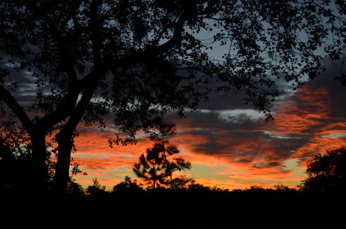 SunsetSimmons